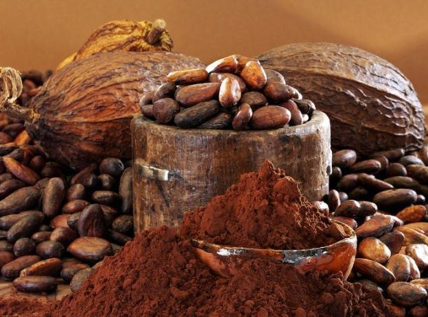 Cacao vs. Cocoa – Are they the same?
