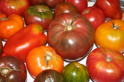 heirloom-tomatoes-tm